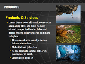 Presentation 4 Slide Example 6